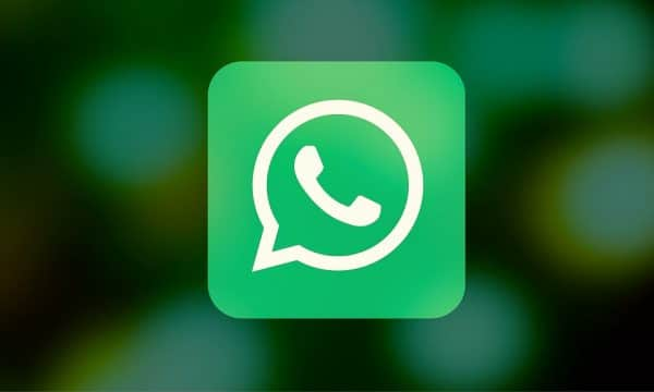 SociaTips, WhatsApp for Business